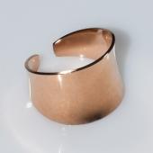 Δαχτυλίδι ατσάλινο (stainless steel) σε ροζ χρυσό χρώμα BZ-RG-00433 Εικόνα 2
