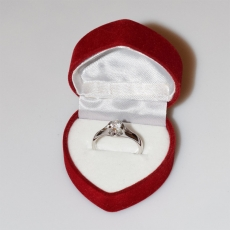 Handmade wedding ring with sterling silver platinum plating and precious stones (zircon) IJ-010476-S in gift box